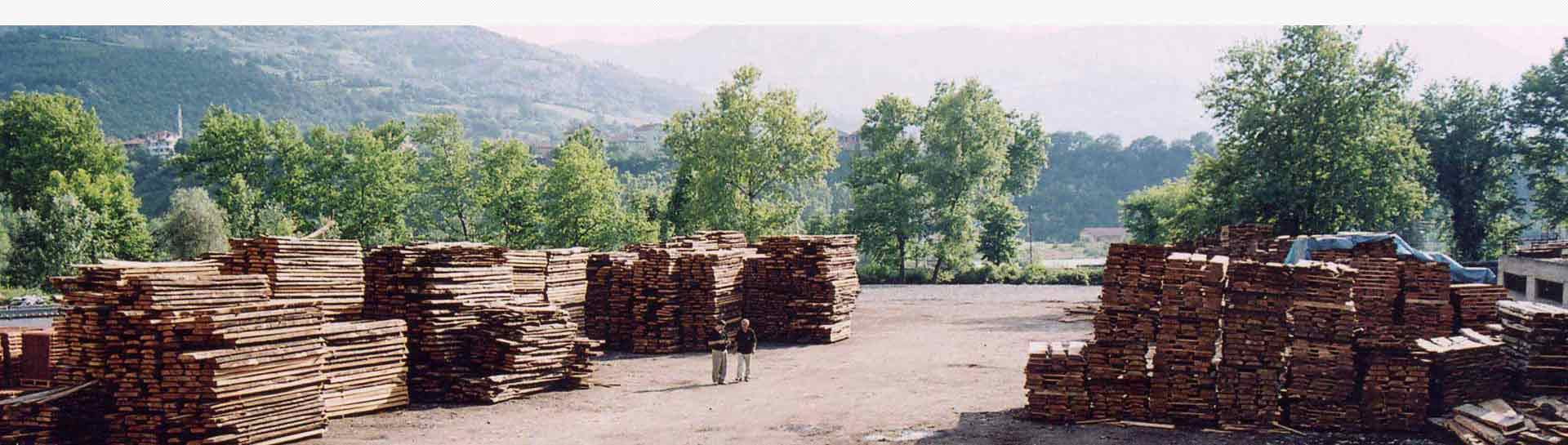 Wooden logs at ASCO Enterprises