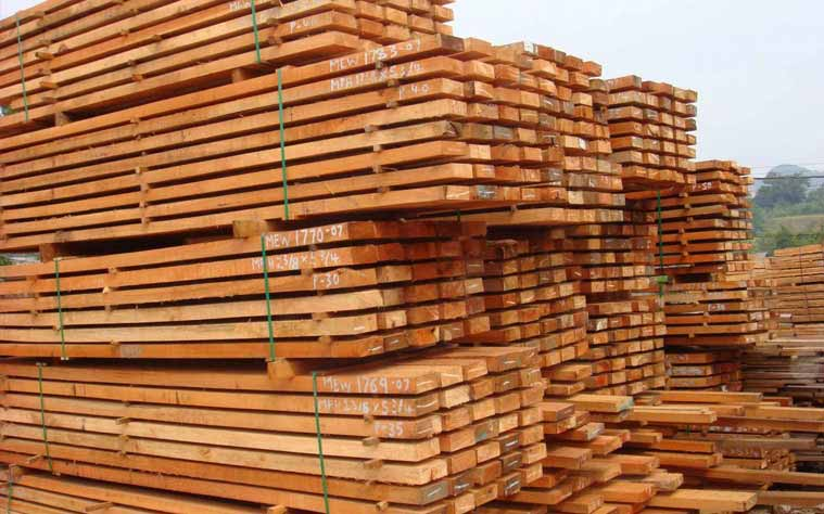 pine logs at ASCO Enterprises